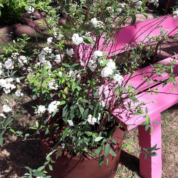 Jardim decorado cor de rosa